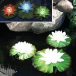 Bermuda Floating Solar Lilies