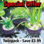 Laguna Floating Pond Planters – 35 & 25cm Set