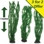 Velda Replica Underwater Plants – 3 for 2  Special Offer