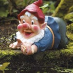 Bermuda Pond Gnome – Caught in the Act